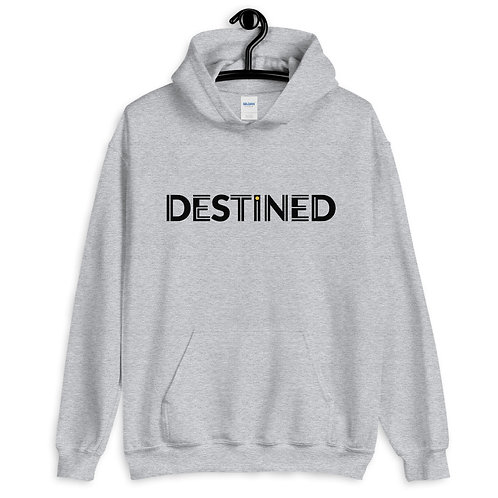 destined Pullover Hoodie 4e