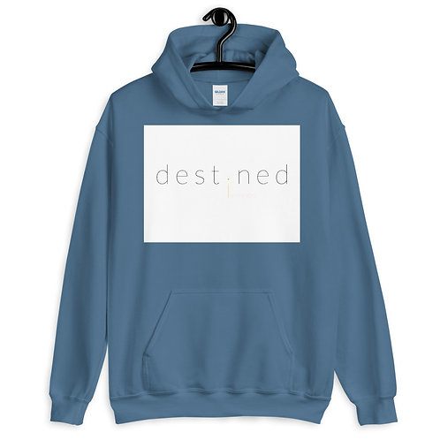 destined WBY Pullover Hoodie 4e