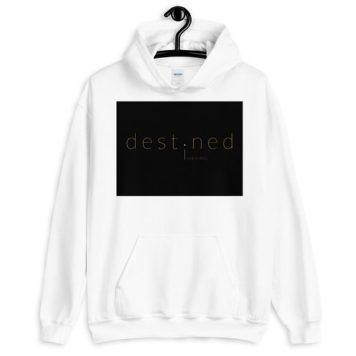 destined BWP Pullover Hoodie 4e