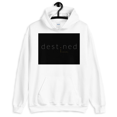 destined BWY Pullover Hoodie 4e