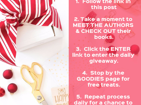 The 12 Days of Christmas Giveaway!
