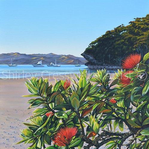 Kiwi Holiday