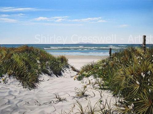 Sea sand and bunnytail grass