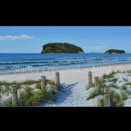 Island View- Whangamata