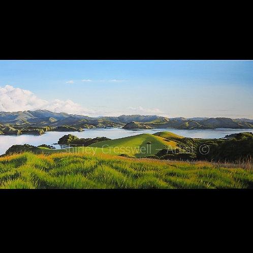 Bay of Islands Vista