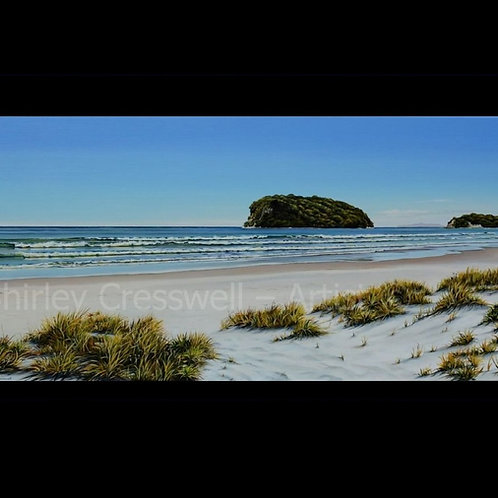 Whangamata Beauty
