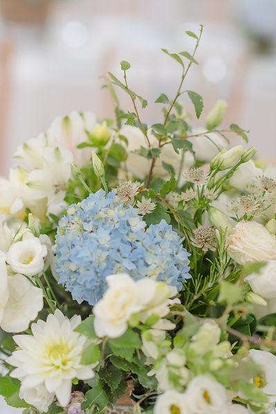 bride_p&s-35.jpg