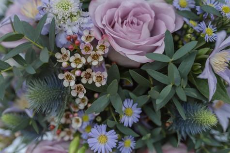 25.01.19-bramble&willow-flobrooksphotogr