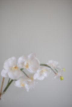 21.06.19-jono&amanda-gettingready-day1-f
