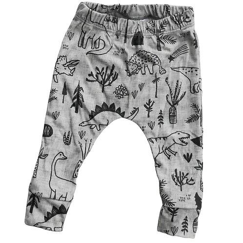 Organic Pants -Dinosaurs