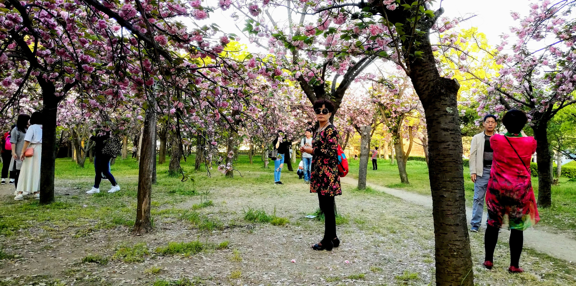people orchard