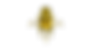 Octopus_yellow-transparent.png