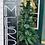 Thumbnail: Christmas Porch Wood Sign