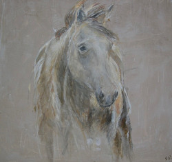 """""""Western Horse"""" 36x40"""" (sold)."""