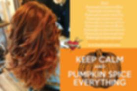 PSL_hair_promo_4x6.jpg