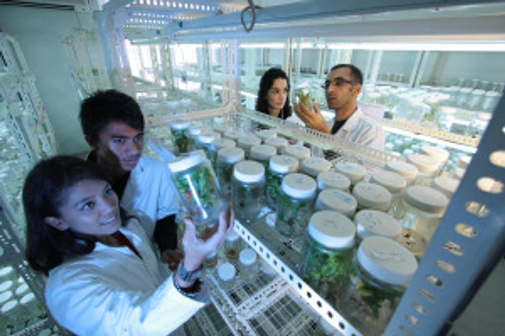 laboratory-385349_1920