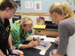Spotlight on Success: STEM Learning Communities