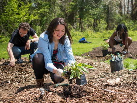 Breaking Ground: A Wellspring of Civic Energy