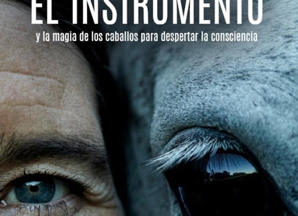 El Instrumento y la magia de los caballos para despertar la consciencia