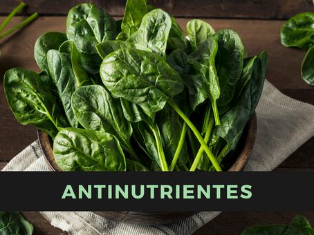 O que são antinutrientes?
