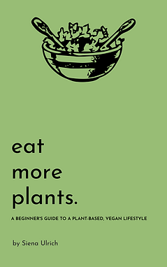 plant-based nutrition.png