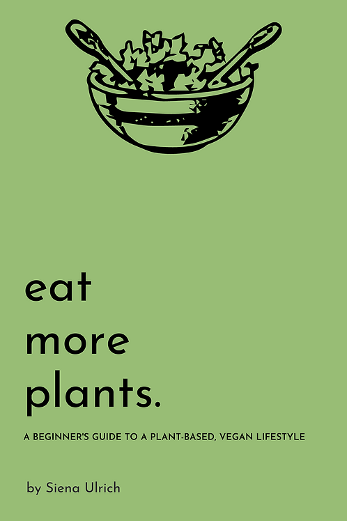 Beginner's Guide to a Plant-Based Vegan Lifestyle