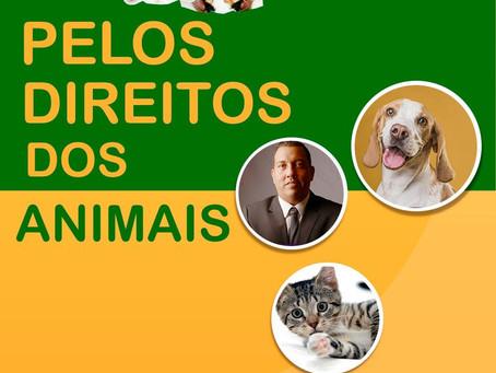 Pelos direitos dos animais!