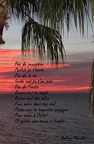 fee_de_poussière.png