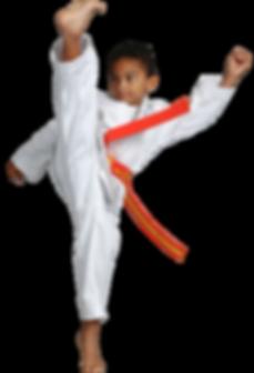 martial arts kids webpg cover.png