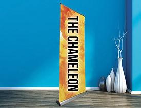 roller-banner-chamelion-main.jpg