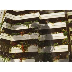 balcony girl thumb
