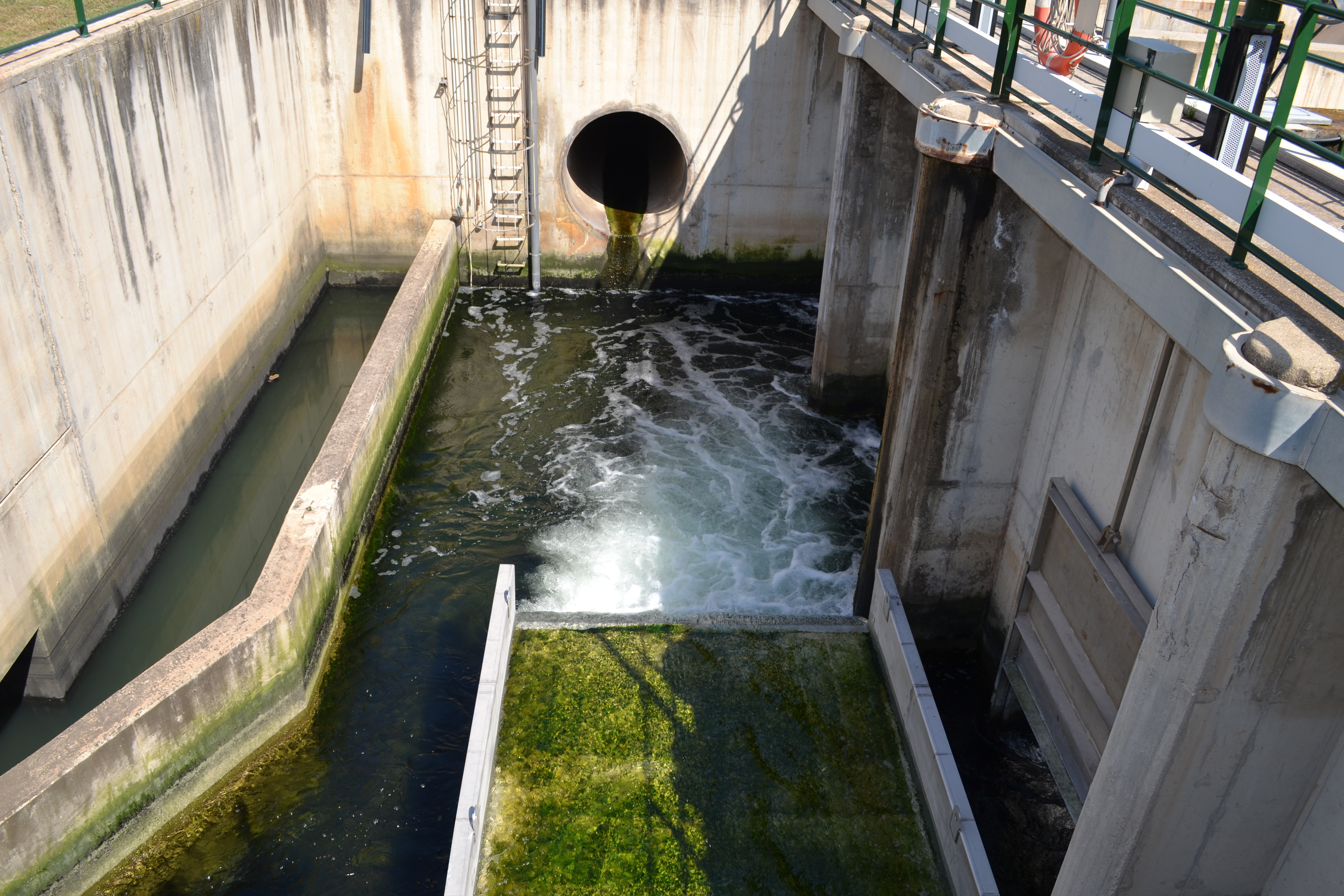 Depuracion-aguas