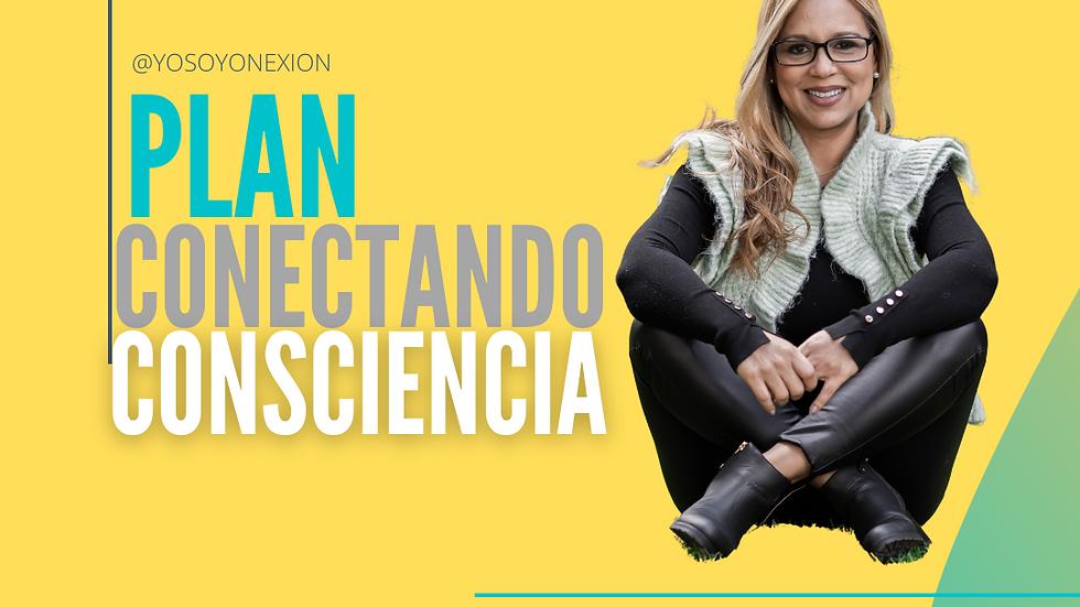 PLAN CONECTANDO CONSCIENCIA