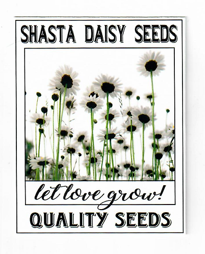 Shasta White Daisy Seed Packet
