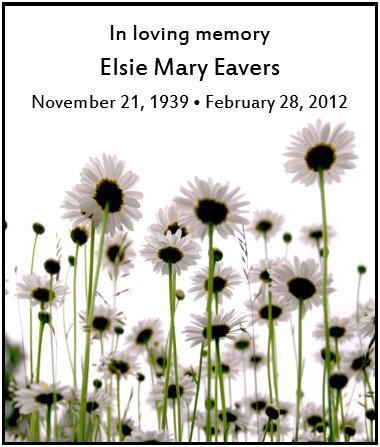 Shasta Daisy Memorial Seed Packet