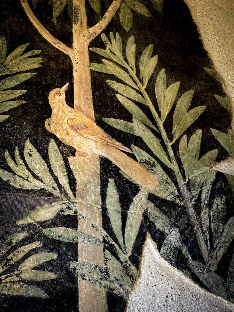 Detail of a bird, wall painting from the House of the Orchard, Pompeii