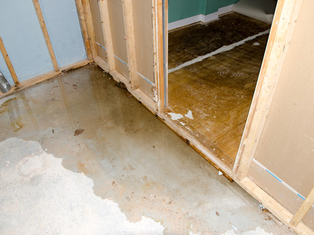 Restoration From Water Damage - Flooring