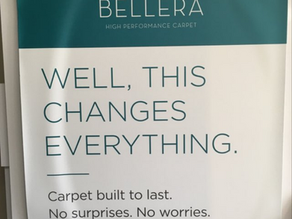 Shaw Bellera Carpet (The Truth About This Product)