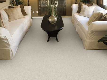 Top Masland Carpet Products