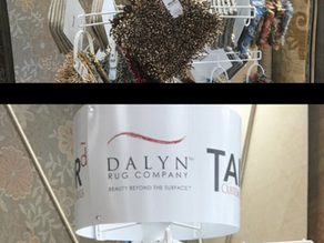Dalyn Rug Company Review