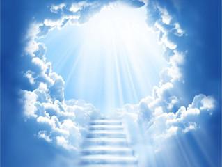 Funeral Announcement of Reginald L. Bailey (Age: 36)