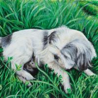 1-Subject (Dog); Full Context