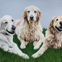 3-Subject (Dog); Partial Context