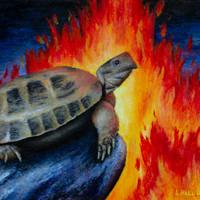 1-Subject (Tortoise); Full Context