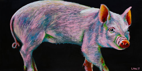 OG Pig