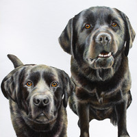 2-Subjects (Dogs)