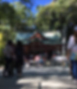 8690487415055_edited.jpg