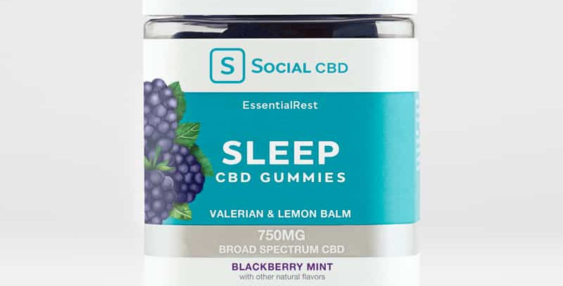 Sleep CBD Gummies Blackberry (10 ct)