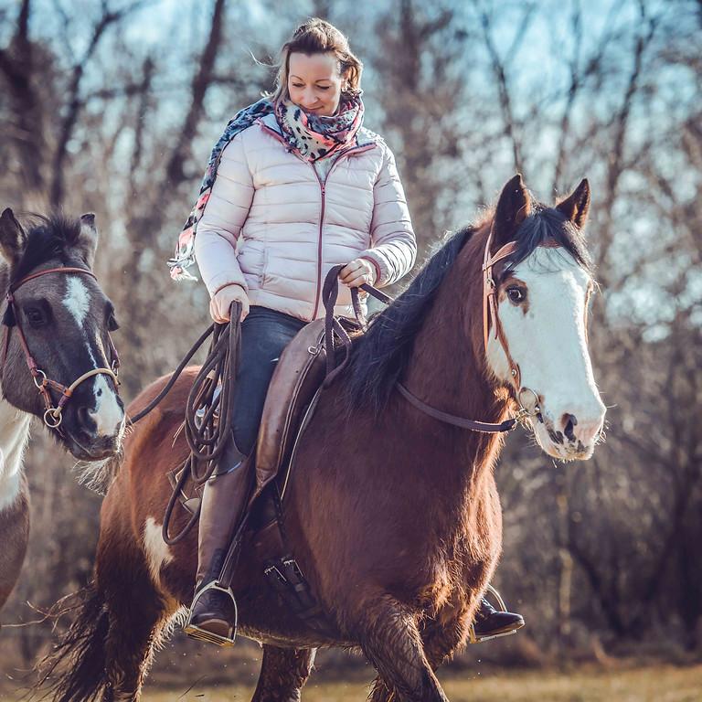 Erfahrungsaustausch für Absolventinnen der HorseSpirit Akademie ONLINE