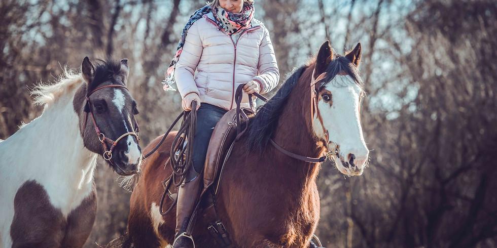 Erfahrungsaustausch für Absolventinnen der HorseSpirit Akademie - Terminänderung!